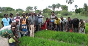 2.-CBA-Namibia-community-volunteers-for-rice-800x600