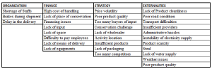 Grouping of agribusiness Critical Success Factors