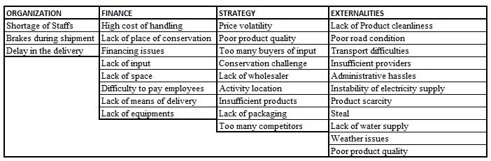 grouping of agribusiness critical success factors research leap