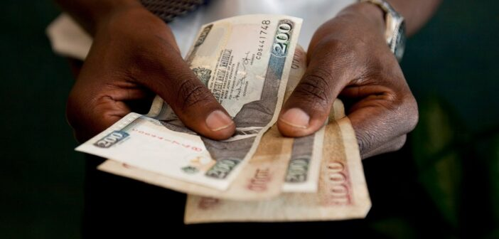Audit Fees and Financial Performance of Deposit Taking Saccos in North RIFT, Kenya