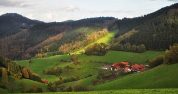 """Further Development of a New Concept in Small Scale Forestry: """"Forest-Management-Service-Contracts"""" in Bavaria"""