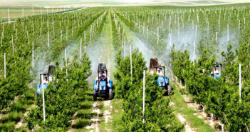 Analysis of Uzbekistan's Planting Industry Growth Based on Shift-Share Method