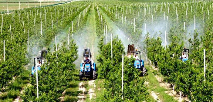 Analysis of Uzbekistan's Planting Industry Growth Based on Shift-Share Method