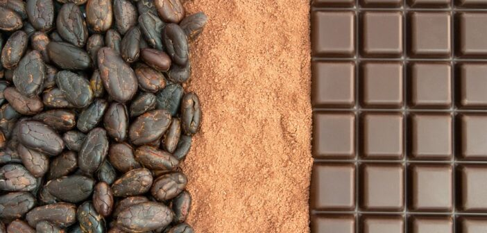 Cocoa Markets and Value Chains: Dynamics and Challenges For Sao Tome and Principe Organic Smallholders